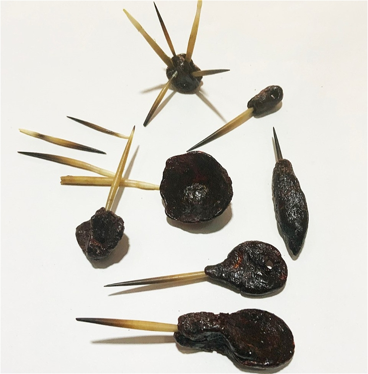 Seven black resin objects in organic shapes with sharp wooden lengths protruding from them