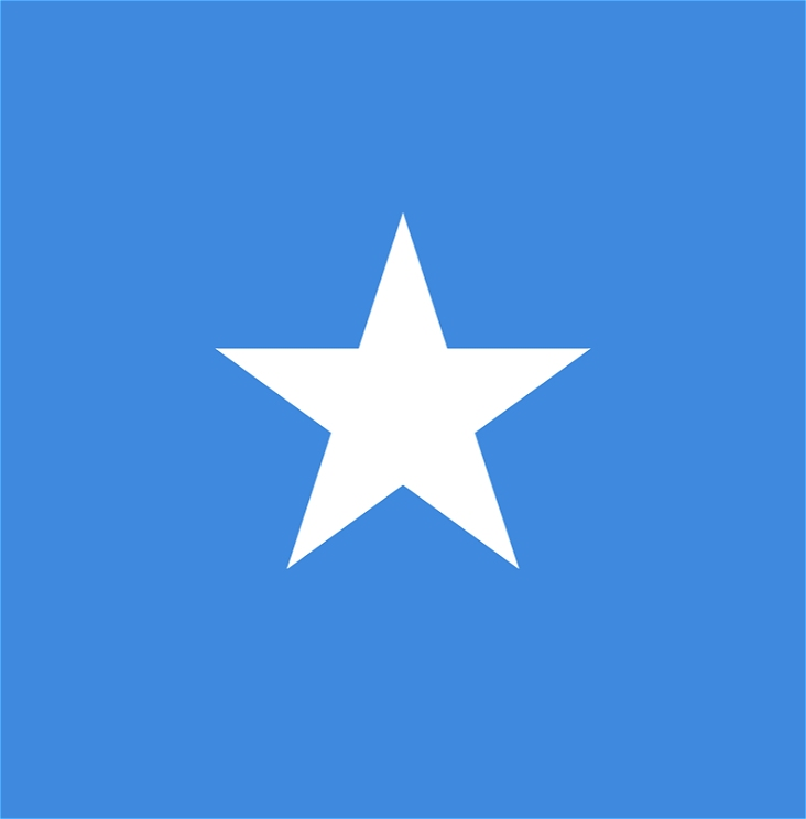 The flag of Somalia. There is a blue background and a white image of a star.